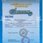 Diplom uchastnika
